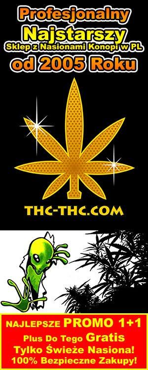 thc-thc.com, nasiona marihuany f1